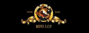 Mini-Lop Metro